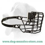 Super Rubber and Plastic Coated Dog Muzzle