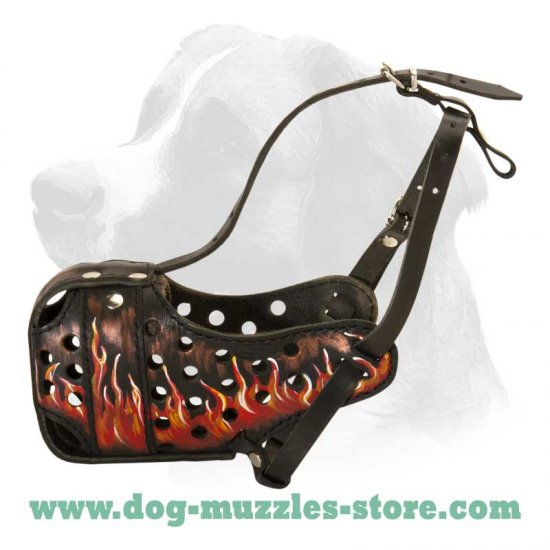 "Hand painted by real artists leather Muzzle ""Dondi"" Plus"