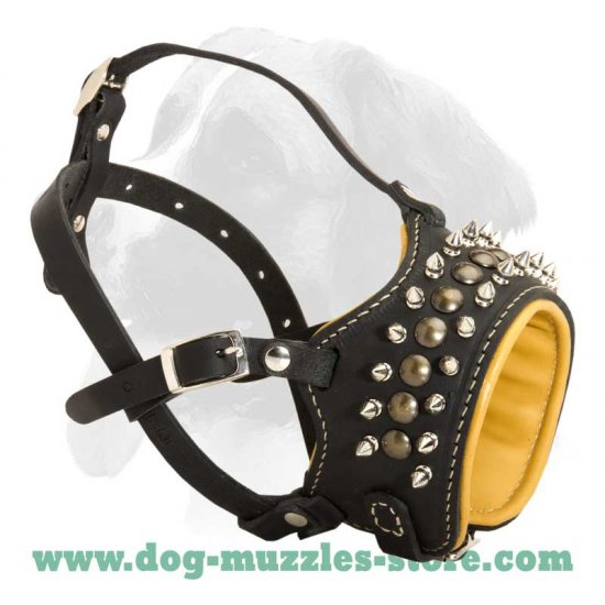 Padded leather dog muzzle with spikes for all breeds