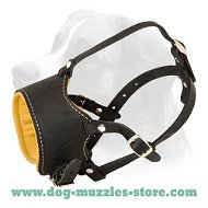 No Bark Dog Muzzle - Leather Padded Dog Muzzle - No bite Muzzle