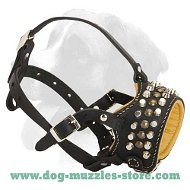 Royal Pyramids Padded Leather Dog Muzzle