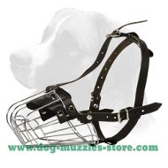 Medium/Large Basket Dog Muzzle -best dog muzzle