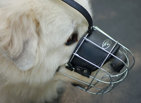 Great Pyrenees Wire Basket Dog Muzzle-Pyrenean Mountain Muzzle