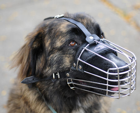 Wire Dog Muzzle for Kavkazskaya Ovcharka-Caucasian Shepherd DOG