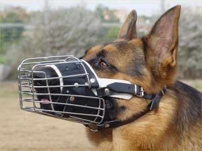 german shepherd wire basket padded muzzle