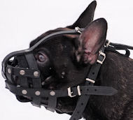 French Bulldog Light Weight Ventilation small dog muzzle M41