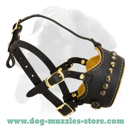 Safe and securely riveted leather dog muzzle