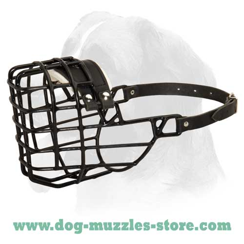 Best training wire basket dog muzzle