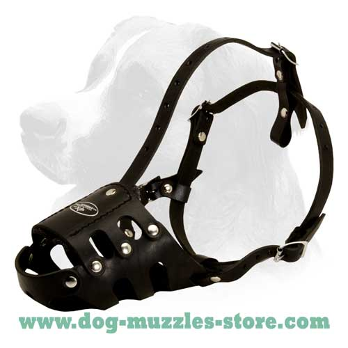 Strong leather dog muzzle