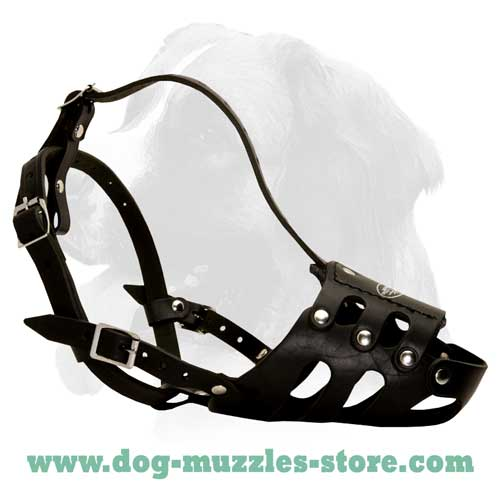 Training leather dog muzzle
