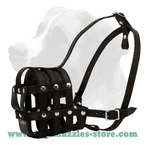 Durable leather dog muzzle
