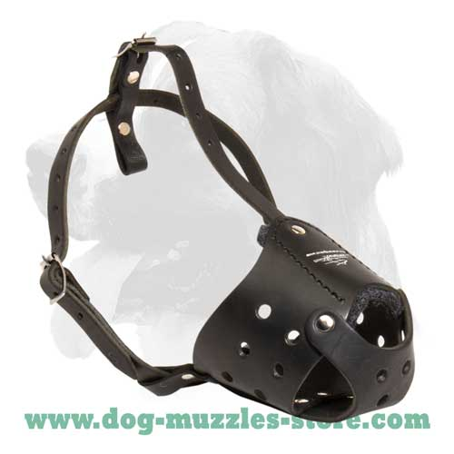 Soft strong leather dog muzzle