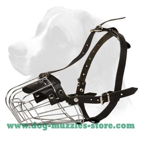 Long lasting durable dog muzzle