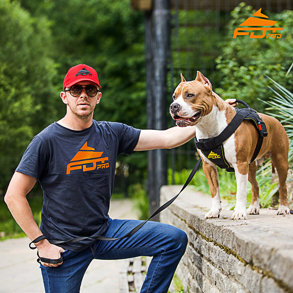Men T-shirt of Reliable Cotton with Professional Logo for Dog Training