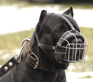 Cane Corso Wire Basket dog muzzle - Large dog muzzle
